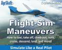 Flight-Sim Maneuvers Tutorial e-Book