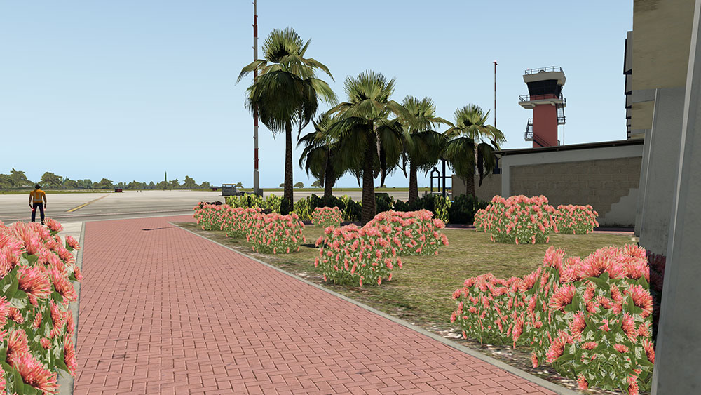 Airport Bonaire Flamingo for X-Plane
