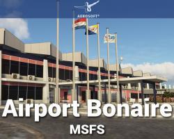 Airport Bonaire Flamingo International (TNCB) Scenery