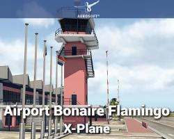 Airport Bonaire Flamingo