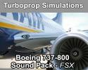 Boeing 737-800 Sound Pack - FSX