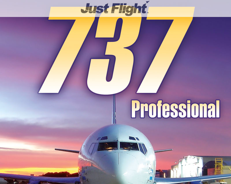737 Professional for FSX