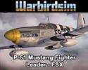P-51 Mustang Fighter Leader