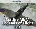 Spitfire Mk V Legends of Flight for FSX