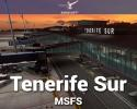 Tenerife Sur Reina Sofía Airport (GCTS) Scenery for MSFS