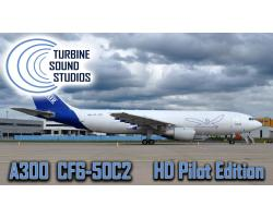 Airbus A300 GE CF-6-50C2 HD Pilot Edition for FSX/P3D